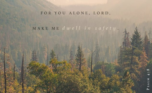Dwell in Safety | boy & KING